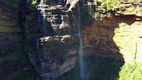 小河和瀑布在长得太大的森林的山 股票视频