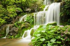 小河和瀑布 免版税库存照片