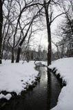 小河和雪 免版税库存图片