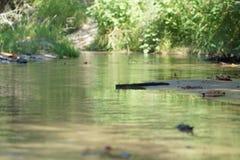 小河和水 库存图片