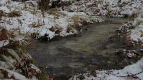 小河在一个多雪的冬天森林里 股票录像