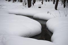 小河在一个多雪的森林里 免版税图库摄影