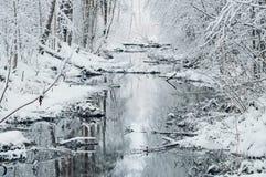 小河在似梦幻般的多雪的森林里 免版税库存照片