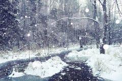 冻小河在冬天森林里 库存图片