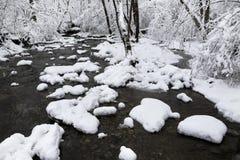 小河在冬天 库存照片