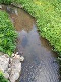 小河在庭院里 库存图片