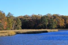 小河在弗吉尼亚 免版税图库摄影