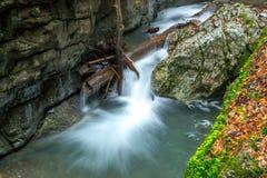 小河在戈尔斯基科塔尔 库存照片