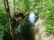 小河在戈绍附近镇的森林  图库摄影