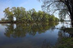 小河在早期的春天 免版税库存图片