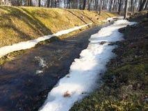 小河在春天公园在解冻的雪框架流动  库存照片
