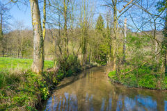 小河在春天流经一个草甸 库存照片