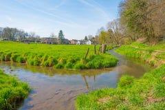 小河在春天流经一个草甸 免版税库存照片
