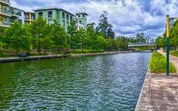 小河在森林地休斯敦 免版税图库摄影