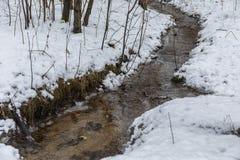 小河在森林早期的春天 苹果覆盖花横向草甸本质星期日结构树 免版税库存图片