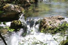 小河在森林里 免版税库存图片