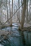 冻小河在森林 免版税库存照片
