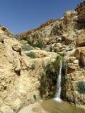 小河在沙漠 图库摄影