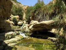 小河在沙漠 免版税库存照片