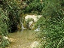 小河在沙漠 免版税库存图片