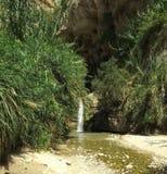 小河在沙漠 库存图片