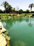 小河在沙漠 免版税图库摄影