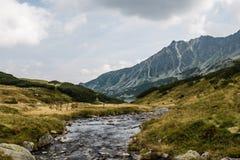 小河在波兰塔特拉山脉 库存图片