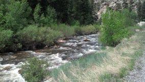 小河在科罗拉多 免版税图库摄影