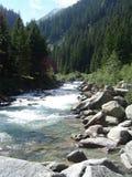 小河在阿尔卑斯 免版税库存图片