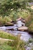 小河在高峰地区 图库摄影