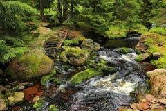 小河在从山Sumava的原野在南捷克 图库摄影