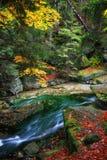 小河在Karkonosze山秋天森林里  免版税库存照片