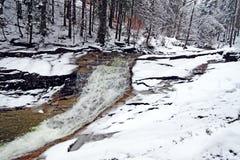 小河在Krkonose山多雪的森林里  免版税库存照片