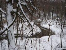 小河在Kuzminki公园冬天森林里在莫斯科 免版税库存图片