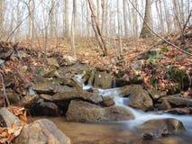 小河在Ohiopyle 免版税库存照片