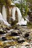 小河场面白色冬天 免版税库存照片