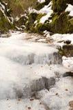 小河场面白色冬天 免版税库存图片