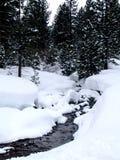 小河场面雪冬天 免版税库存照片