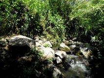 小河山 库存图片