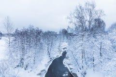 小河或溪的风景在美丽的冬天森林里或在公园 免版税图库摄影