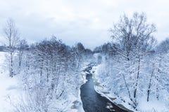 小河或溪的风景在美丽的冬天森林里或在公园 免版税库存图片