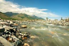 小河流动入贝加尔湖 免版税图库摄影