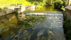小河流程冷水在小石测流堰的 在开花的小水花在泥泞的水波纹的测流堰下  股票视频
