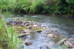 小河流 免版税库存图片