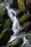 小河瀑布白色 库存照片
