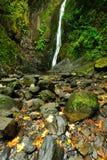 小河瀑布 库存图片
