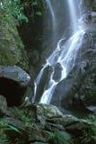 小河瀑布 库存照片
