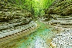 小河用在深峡谷的纯净的水 图库摄影