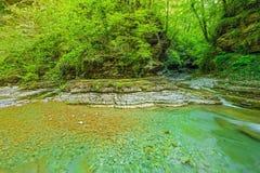 小河用纯净的水 免版税库存照片