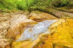 小河用纯净的水 库存图片